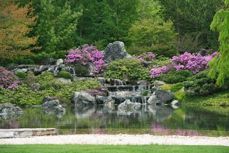 garden landscaping: Flowering Japanese garden with pond and water cascades.