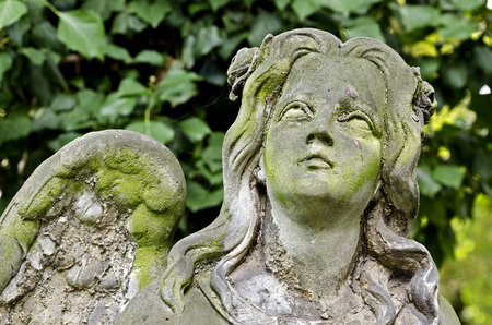 Weathered statue of an Angel - looking in heaven - tombstone - old Prague cemetery, Czech republic, Europe
