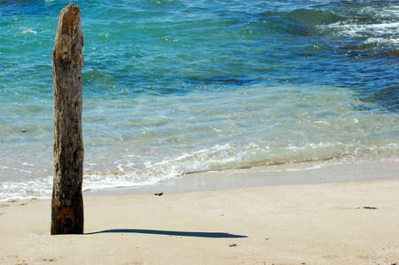 A wooden stem in the sand of the beach close to the sea working as a natural clock photo