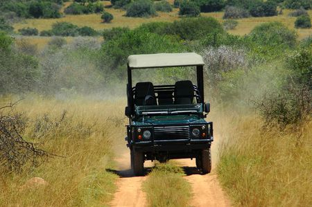 On wildlife safari with a vehicle in a game reserve in South Africa Stock Photo