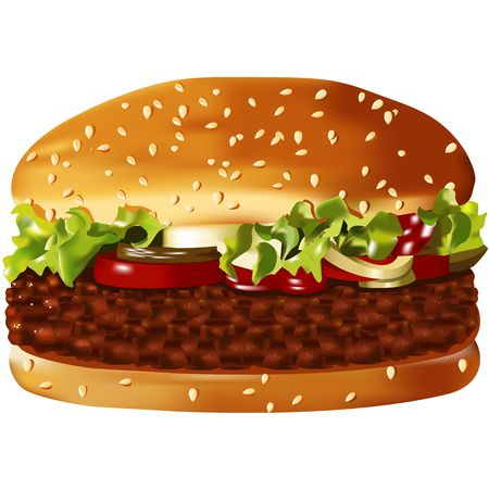 Big, vector, american hamburger on the white photo