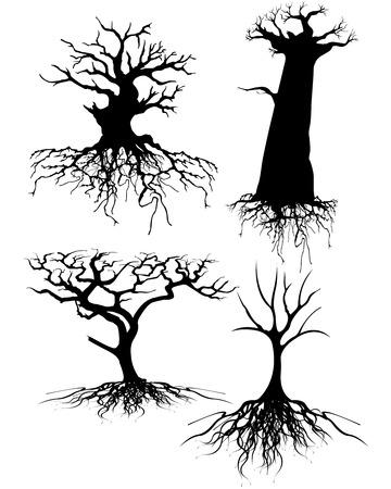 kale: Vier verschillende oude boom silhouet tes met wortels