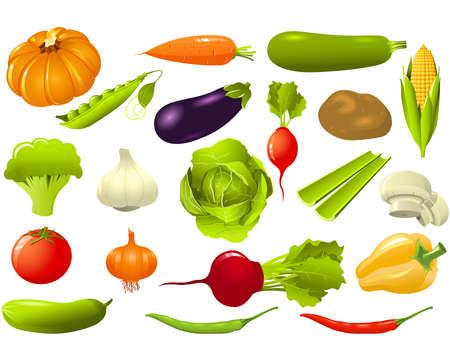 beetroot: Conjunto de verduras Vectores