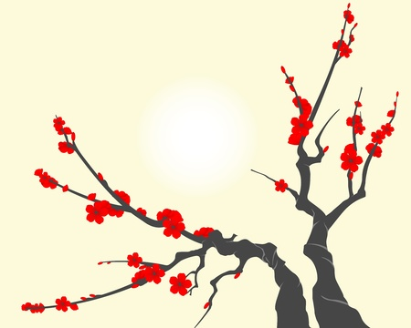 arbol de cerezo: Rama de flor de Sakura Vectores