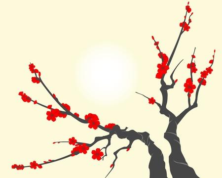 cherry blossom illustration: Sakura blossom branch