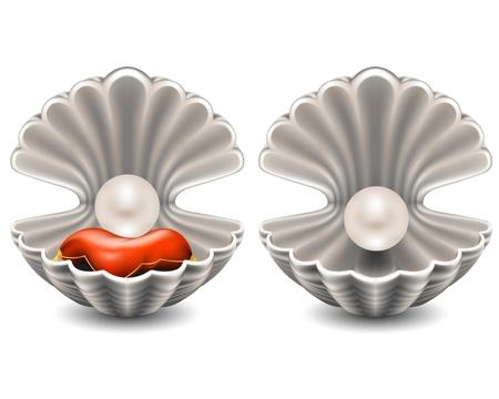 ostra: Concha de mar abierto con una perla