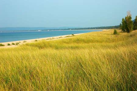grasses: Lake Michigan  - Shoreline of Lake Michigan in the USA.