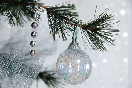 glistening: Dreaming of a White Christmas - Winter pine tree with silver holiday beads and iridescent wire covered balls hanging from the branches against a glistening, snow white background. Stock Photo