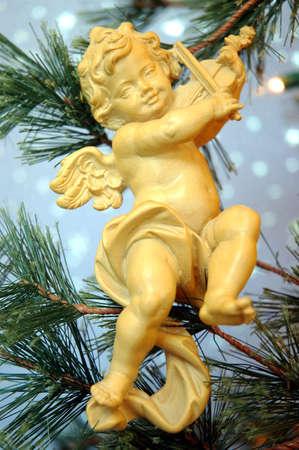 ali angelo: Cherubino
