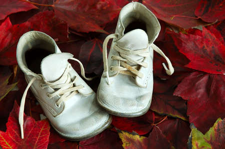 constitutionality: Vintage  shoes on bright red fall leaves.