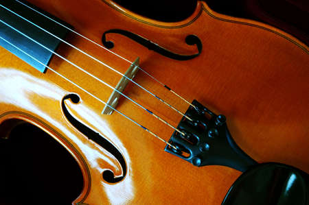 man nuts: Violin in a dark red velvet case.