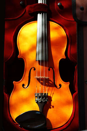 Violin in a dark red velvet case.