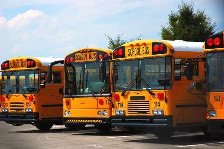 school buses: School buses parked at the schoolyard.