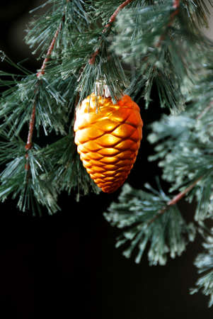 Christmas Tree - Gold pinecone ornament hanging on a Christmas tree branch with a black background and space for copy. christmas, holiday, xmas, winter, ornament, hanging, decor, decoration, decorative, tree, fir, pine, needles, branch, pinecone, gold, gr photo