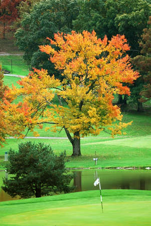 Golf course green in autumn. Stock Photo