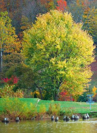 brilliant colors: Oto�o Esplendor - La ca�da de colores brillantes iluminan las colinas de Kentucky a lo largo de la orilla de un lago.