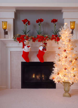 christmas morning: Two red fur stockings hang on the fireplace mantle next to a glowing christmas tree on Christmas morning.