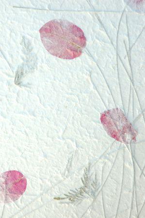 an overlay: Artesanal de papel blanco con p�talos de flores inclusiones de turbulencia, para su uso como una superposici�n o textura de fondo.