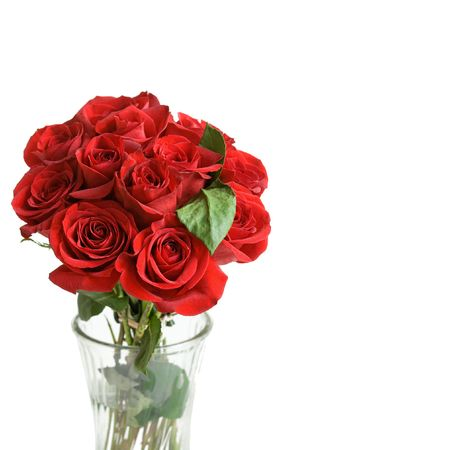 One Dozen beautiful red roses in a vase, on a white background with space for copy.  Stock Photo