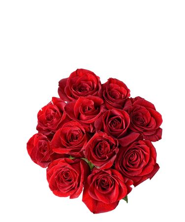 One Dozen beautiful red roses on a white background with space for copy.