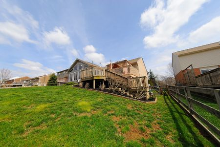 Back Yard and Deck of a suburban Neighborhood Brick Home - a spring day in the burbs. Fisheye view.