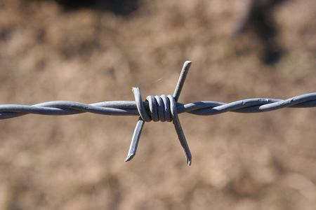 A strand of barbed wire between two fence posts.  Wire is fairly new with spider webs on it. Stock Photo - 712765