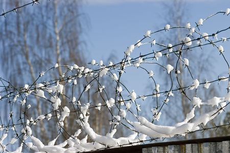fencing wire: Barbed wire under a snow in Vyborg Stock Photo