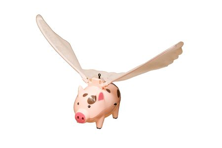 pig with wings: Toy - flying a pig with wings