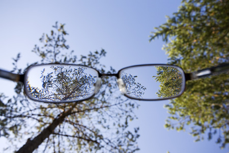 scrutiny: trees and blue sky through the glasses Stock Photo