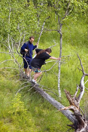 snag: two people threading their way through a fallen trunk
