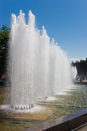 sprinkling: Fountains with parallel spurts in city park in sunny summer day