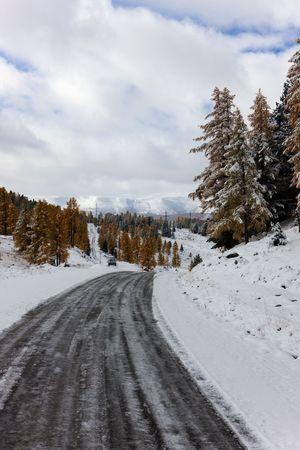 Mountain road in snow day, Altai, Russia photo