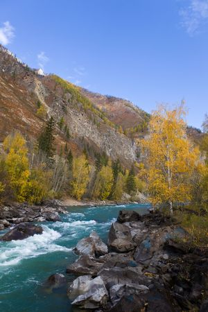 The fast mountain river in autumn day Stock Photo - 6342832