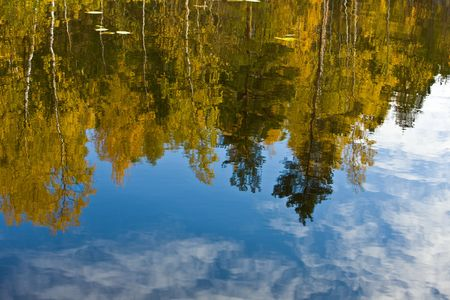 Reflection of autumn wood in lake water Stock Photo - 7480633