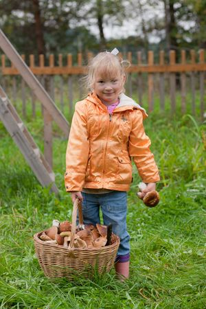The little girl with a basket of ceps photo