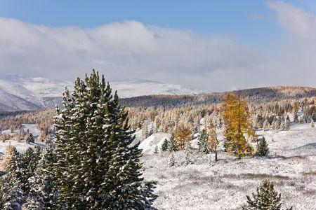Winter landscape in a sunny day, Altai, Russia photo