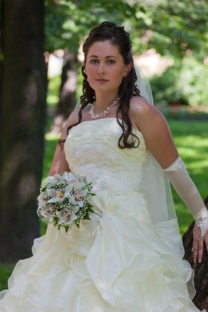 Portrait of the bride in the wedding day Stock Photo - 8246033