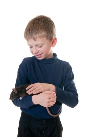 rat: Portrait of the little boy with a domestic rat Stock Photo