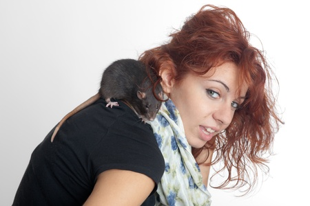 Portrait of the beautiful girl with a black rat photo