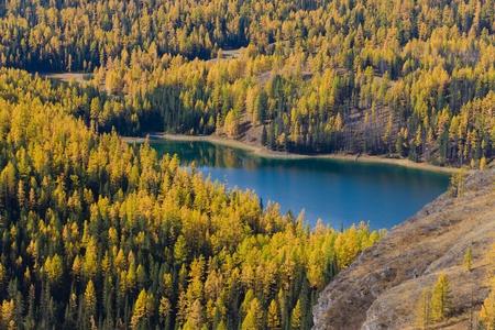 the mountain lake in an autumn valley photo