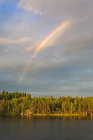 rainbow above wood lake in summer evening  photo