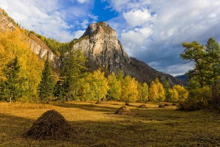 sunny autumn landscape in the mountains, Altai, Russia photo