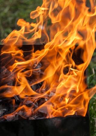 brazier: burning wood in a brazier close up