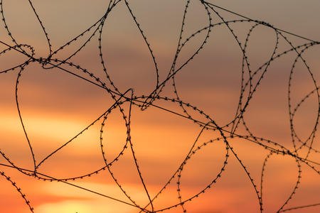 fence with barbed wire on a background of a sunset photo