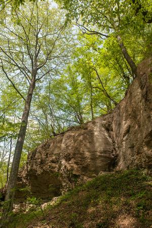 hillsides: hillsides with rocks covered lush spring greenery