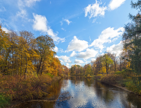 landscape in sunny autumn park with a small river photo