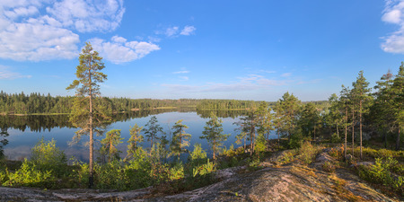 panorama of a forest lake on a sunny morning photo