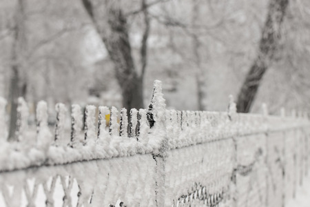 winter wood: Park fence close up on a winter day