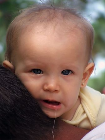 drool: Baby drool
