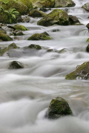 composure: The mountain creek Lauch in the Vosges mountains - Alsace - France
